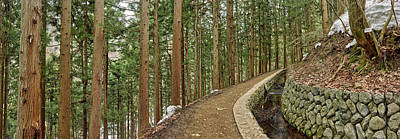 Designs Similar to Trees In Jigokudani Monkey Park