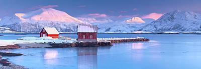 Designs Similar to Arctic Rorbeur by Antonyspencer