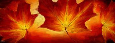 Maple Leaf Art Digital Art