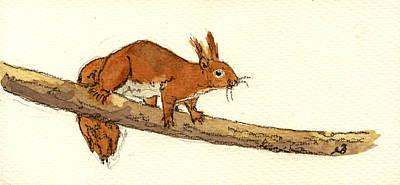 Designs Similar to Squirrel by Juan  Bosco