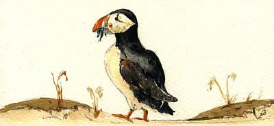Seabirds Art Prints