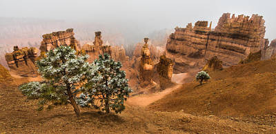 Designs Similar to Bryce Canyon National Park
