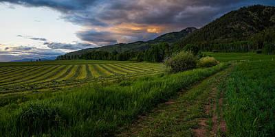 Ranching Photographs