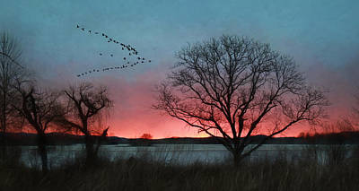 Snow Geese Mixed Media