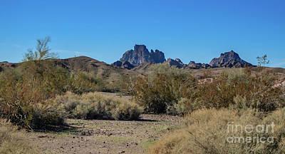 Designs Similar to Arizona Wilderness