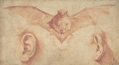 Designs Similar to A Bat And Two Ears