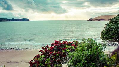 Designs Similar to Opononi Beach New Zealand