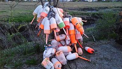 Scott Decker: Lobster Buoys Shoreline Art