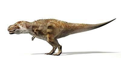 Designs Similar to Tyrannosaurus Rex Dinosaur