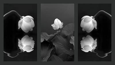 Designs Similar to Tonal Study Triptych