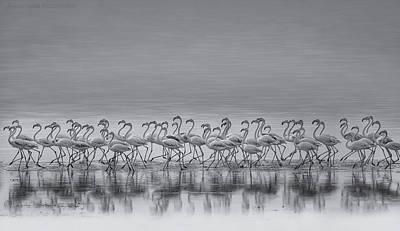 Flock Art Prints