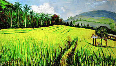 Designs Similar to Rice Fields