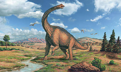 Designs Similar to Brachiosaurus Dinosaur