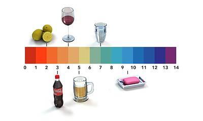 Designs Similar to Ph Scale by Mikkel Juul Jensen