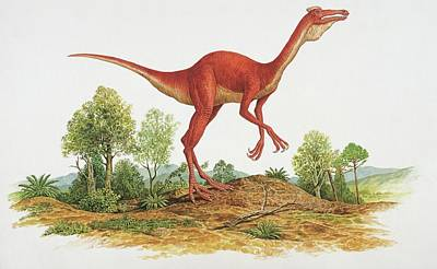 Designs Similar to Side Profile Of A Dinosaur