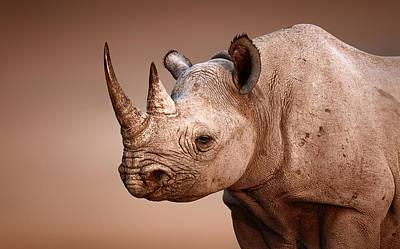 Designs Similar to Black Rhinoceros Portrait