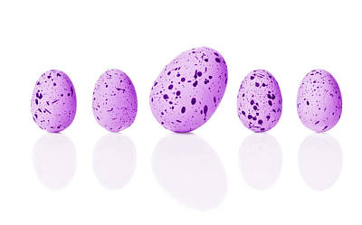 Designs Similar to Bright Easter Eggs