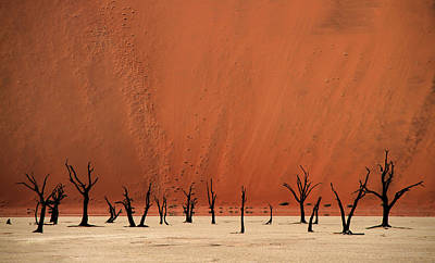 Designs Similar to Deadvlei