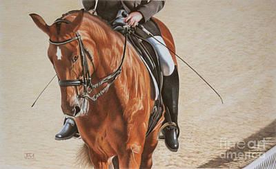 Jill Parry: Horse Art
