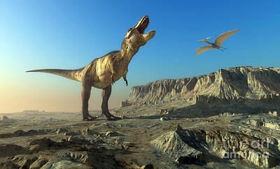 Palaeontology Posters