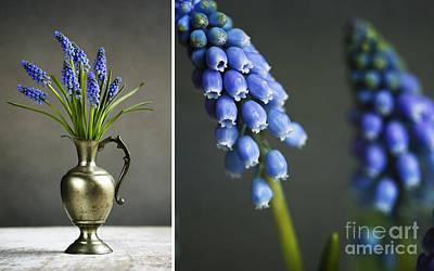 Designs Similar to Hyacinth Still Life