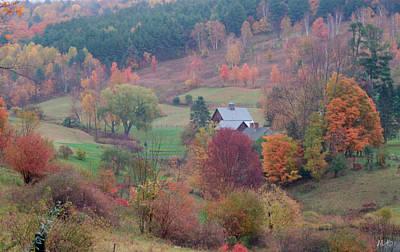 April Bielefeldt: Fall Foliage Art