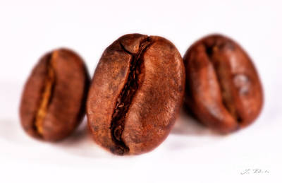Designs Similar to 3 Coffee Beans