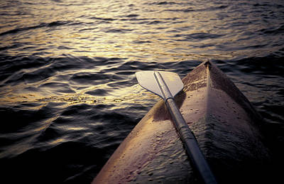 Designs Similar to A Kayak Floats In The Water