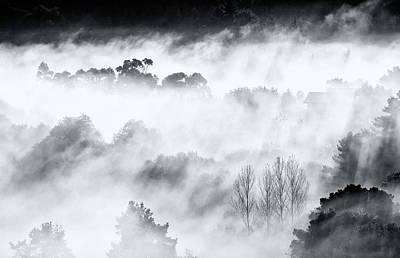 Niebla Art
