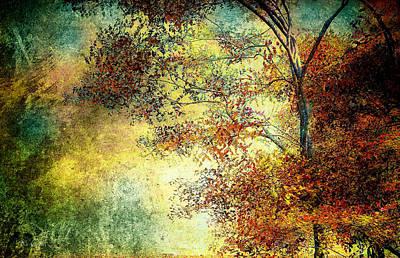 Fall Framed Prints