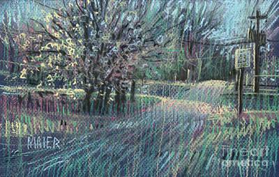Flowering Trees Drawings Prints