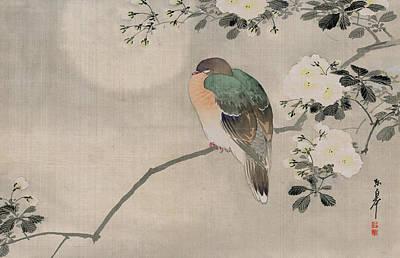 Silk Drawings