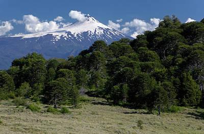 Designs Similar to Huerquehue National Park, Chile