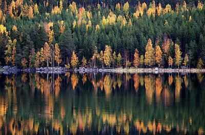 Designs Similar to Autumn by Bror Johansson