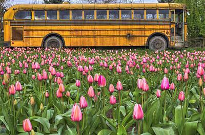 Old School Bus Photographs