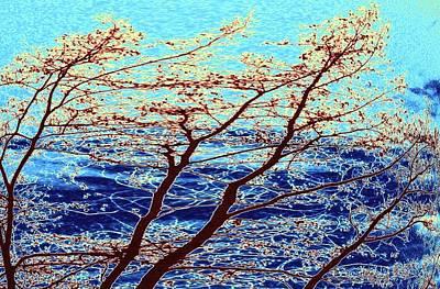 Turbulent Skies Digital Art Prints