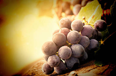 Clusters Of Grapes Mixed Media Prints