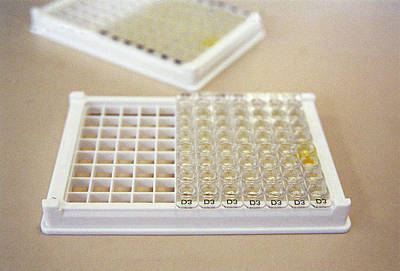 Designs Similar to Elisa Test Plate