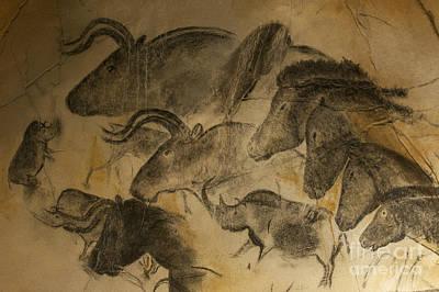Prehistoric Photographs