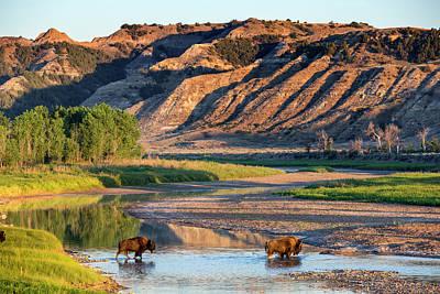 North Dakota Badlands Art