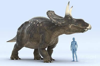 Designs Similar to Dinosaur Diceratops