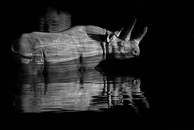Designs Similar to Black Rhinoceros At Night