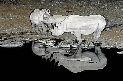 Designs Similar to Black Rhinoceros