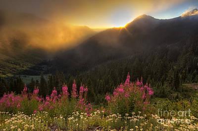 Chinook Pass Photographs