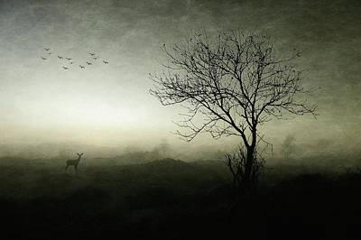 Designs Similar to Dawn..........