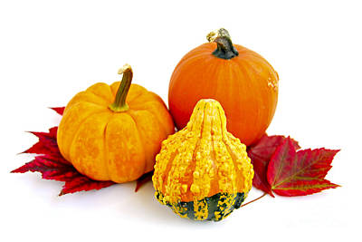 Designs Similar to Decorative Pumpkins