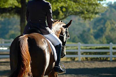 Hanovarian Dressage Horse Posters