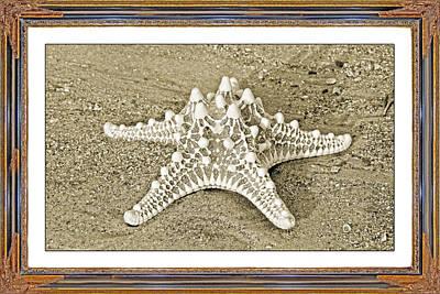 Oceanic View Prints