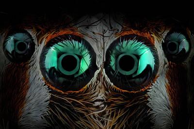 Designs Similar to Jumping Spider Eyes