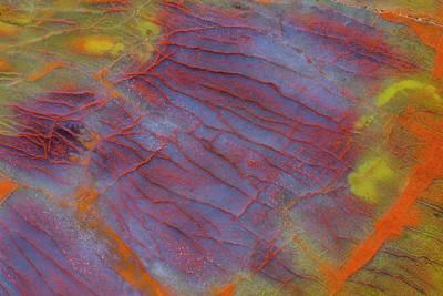 Designs Similar to Petrified Wood Close-up